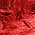 Study Finds Blood From Vegans Is More Protective Against Cancer