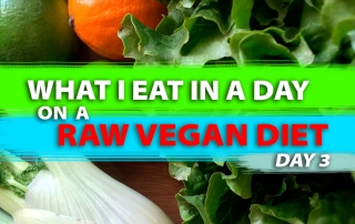 What_I_Eat_In_A_Day_On_A_Raw_Vegan_Diet_Day_3